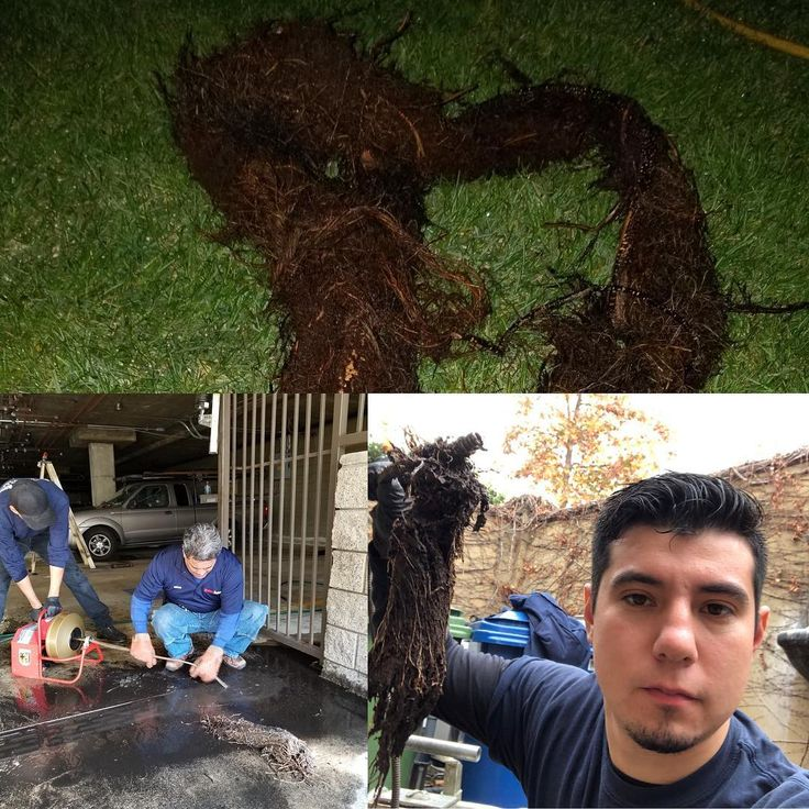 Expert Drain Cleaning & Rooter Services Sewer line