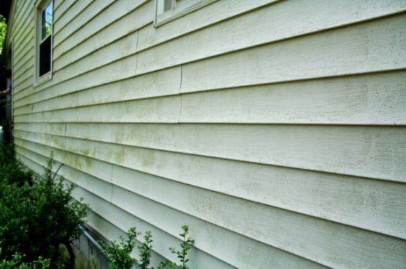 Mold Busters Or How To Clean Vinyl Siding Rhapsody In