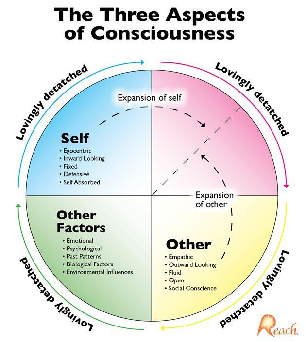 philosophy diagram\u201d的图片搜索结果 philosophy chart, philosophy Ikigai Diagram
