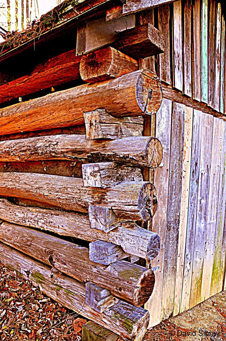 Primitive Cabin In Beckley, West Virginia