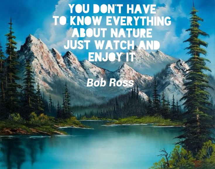Bob Ross quotes, inspirational quotes | Things I love ...