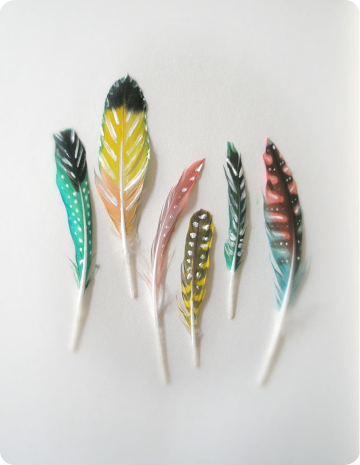 d.i.y. coloured feathers