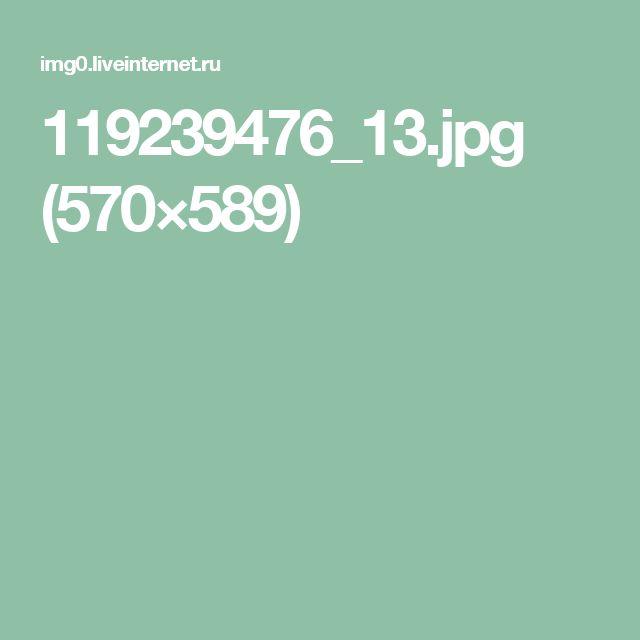 119239476_13.jpg (570×589)