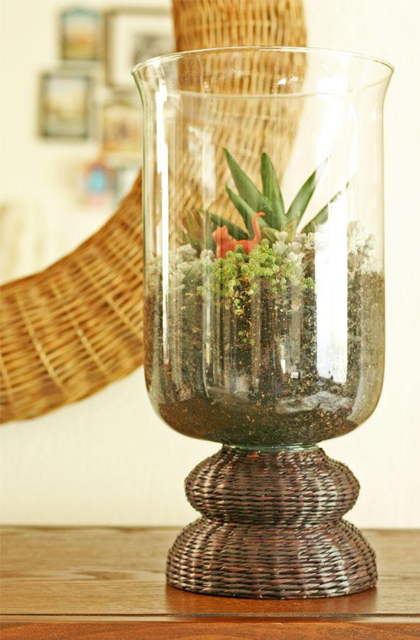 Tips for making a succulent terrarium.