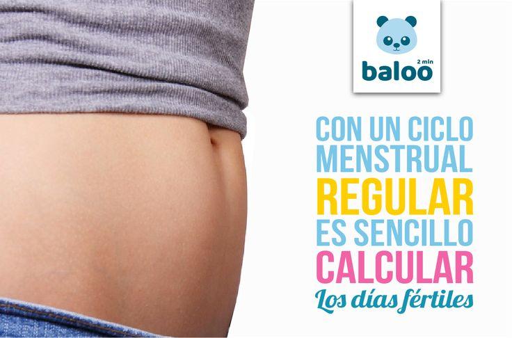 Con un ciclo menstrual regular es más sencillo calcular nuestros momentos de máxima fértilidad. Tiene una duración media de 28 días . Si eres irregular es más difícil calcular los días fértiles ya que varían de un mes a otro. Por ello, la mejor manera es la segunda técnica: estar atenta a los signos de ovulación.