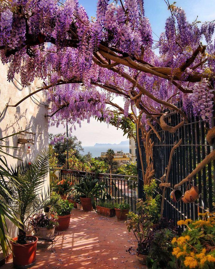 un po' di Capri..4 aprile 2017#casalediposillipo #naples #napoli #ig_napule #campania #italia_dev #world_great #italiainunoscatto #italy #italia #loves_united_napoli #europe #ig_italy#ig_italia #ig_skyline