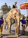 """""""White Elephant"""".  meaning, a burdensome possession creating more trouble than it is worth.  White (albino) elephants were regarded as holy in ancient times in Asian countries.  Keeping one was very expensive and sometimes ruined the recipient.  Hence, the term """"white elephant'...useless and not needed...get rid of."""