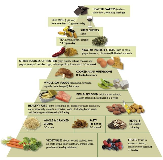 The Iron You: Nutrition