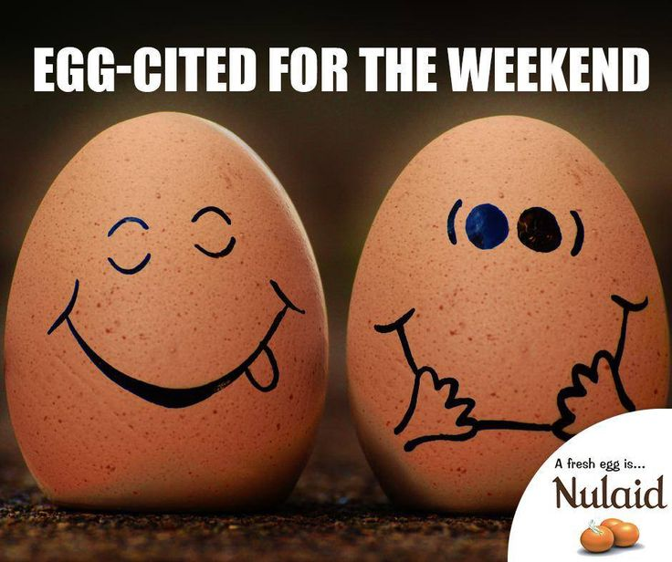 Egg-cited for the weekend. #FridayFunny #Nulaid