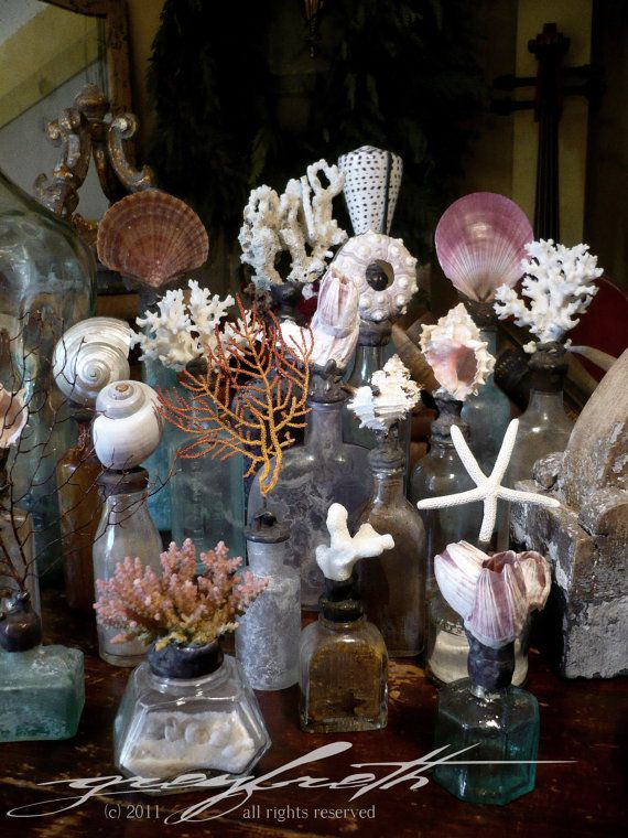 Shells and shell crafts