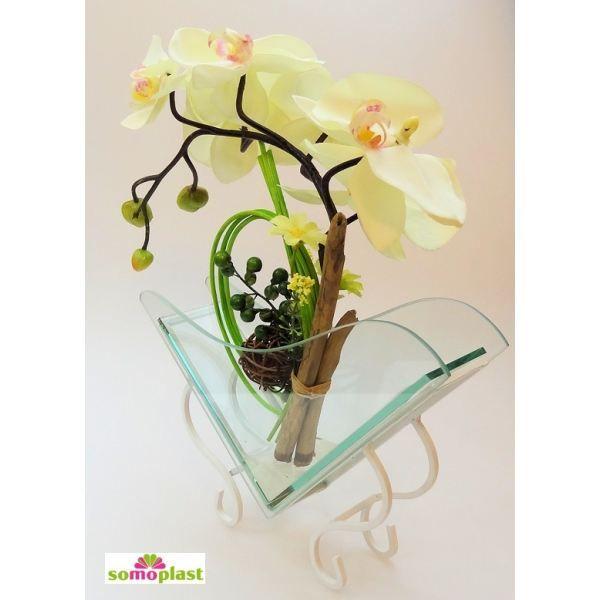 best 25+ fleur orchidée ideas on pinterest   fleurs exotiques