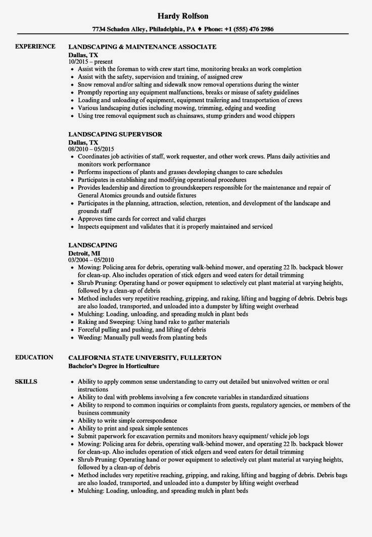 Happy Career Advice Dream Job Careermodewarlike Resume Examples Medical Assistant Resume Examples Professional Resume Writing Service Resume Writing Services