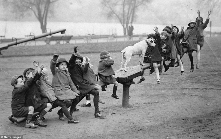 Ups and downs: Even the dog gets a go on this see-saw. These delightful images were all captured in the days before the health and safety industry took root, in an age when childhood  disease or war represented  more pressing threats to a child's prospects than a game of conkers.