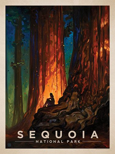 Sequoia National Park: Nature's Cathedral - Anderson Design Group has created an award-winning series of classic travel posters that celebrates the history and charm of America's greatest cities and national parks. Founder Joel Anderson directs a team of talented artists to keep the collection growing. This oil painting by Kai Carpenter celebrates the majestic beauty of Sequoia National Park.<br />