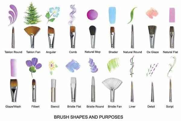 Different+Types+Of+Paint+Brushes | Paint brush shapes and purposes via aoeartworld.com