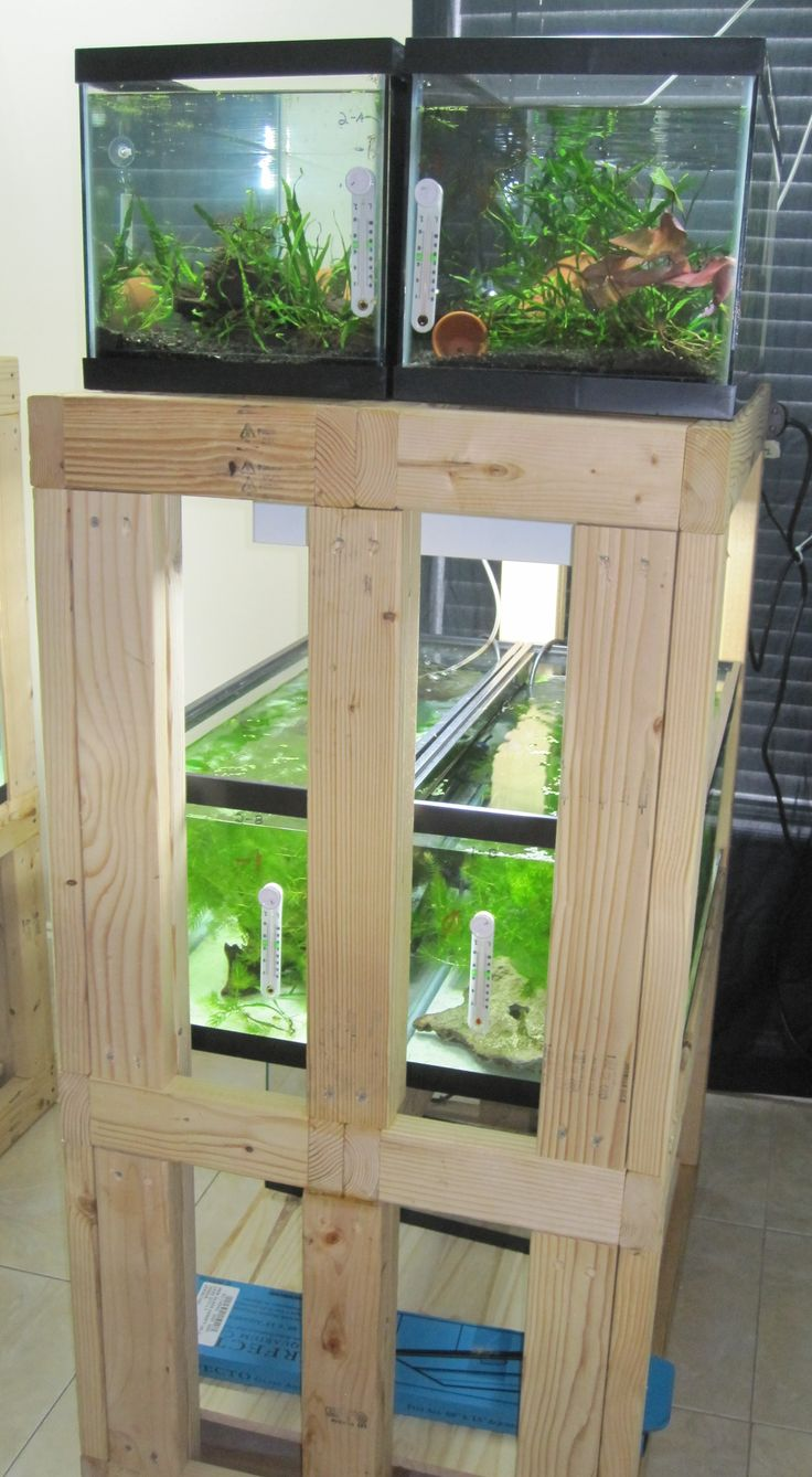 DIY  Build an Aquarium Rack will also need to be able to