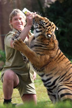 Steve Irwin: Because of the work he did to benefit the animal kingdom, and his enthusiasm for his job.