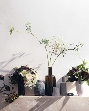 succulents and vases by gentl and hyers