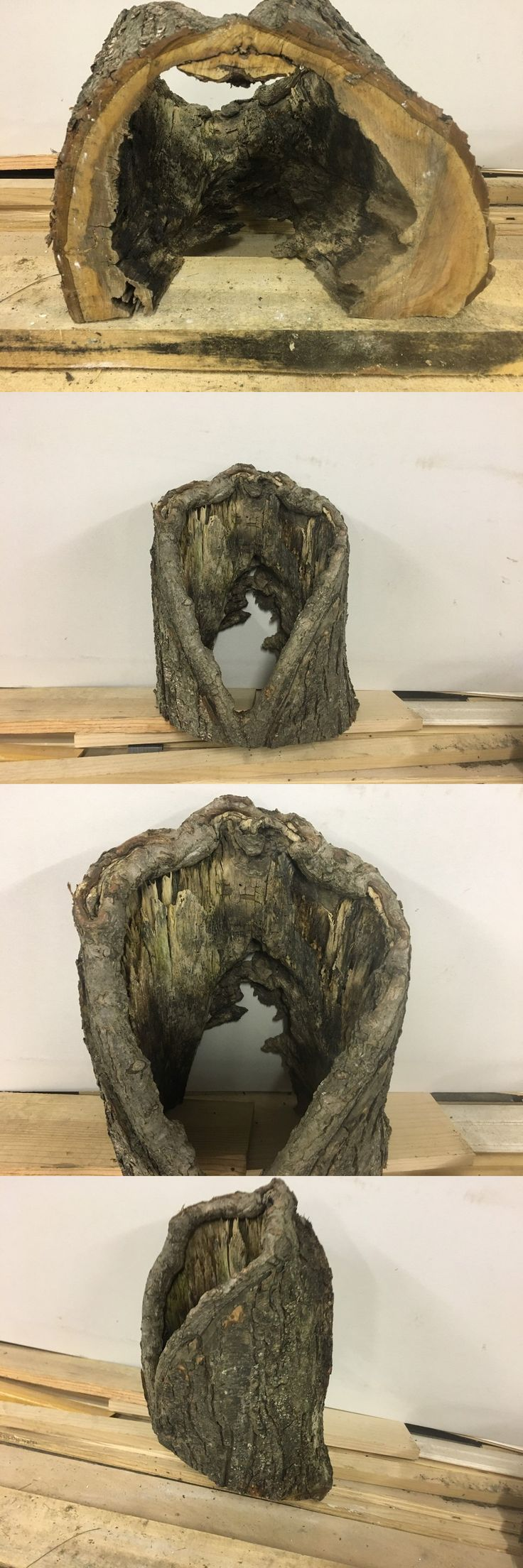 Books and Video 73993: Hollow 13Inch Log Hole Wood Taxidermy Display Rustic Lumber Picture Shelf -> BUY IT NOW ONLY: $49.99 on eBay!