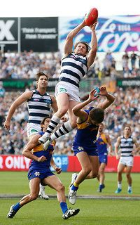 AFL 2016 Rd 07 - Geelong v West Coast