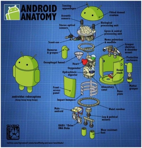 Android 's struture! Know more about Android Data Recovery here: http://www.any-data-recovery.com/topics/mobile-devices/android-recovery.html