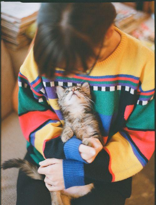 ラブリー-KittyCats、catsandtheirhumans:ハービー(ブエナベントゥラ経由...