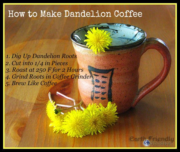 Dandelion is a great liver detox, plus it has numerous other benefits. Find out more here: Dandelions: Can't Beat em Eat em – Ten Dandelion Benefits
