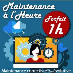 Forfait Maintenance 1h