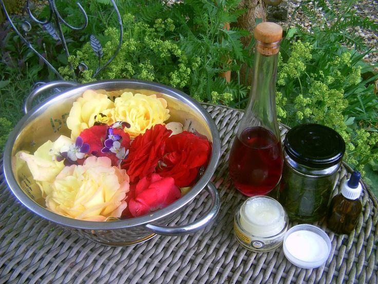 De cursus Kennis van Kruiden (voorjaar/zomer) gevolgd.Thema was reinigen en spijsvertering.siroop gemaakt van viooltjes, zalf van vlierbloesem en tinctuur van citroenmelisse - 2013