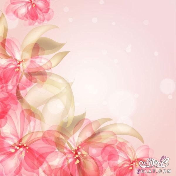 خلفيات زهور هادئه جدا خلفيات جميلة مميزة جديدة خلفيات 2020 Flower Backgrounds Vector Flowers Graphic Design Art