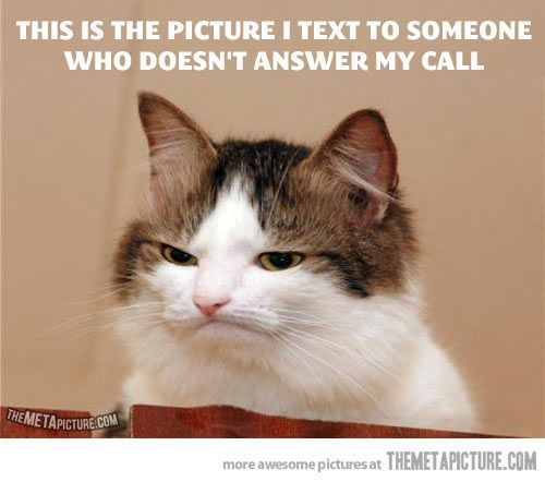Amusing. (But then again, why are you CALLING if you could just be texting instead?!)