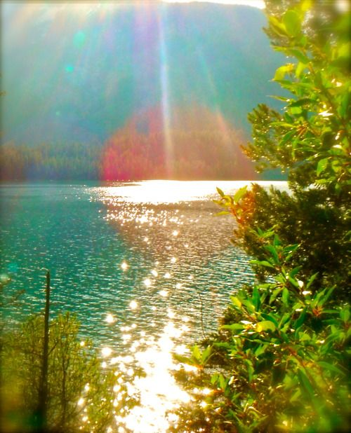 : Summer Day, God Is, Beaches Life, Lakes, Sun Kiss, Cottages Life, Summer Lights, Summer Sunshine, Good Mornings Sunshine