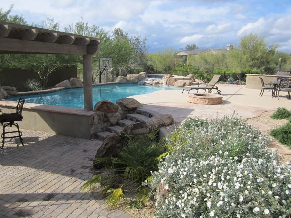 71 best images about pool on pinterest arizona play for Garden pool in arizona