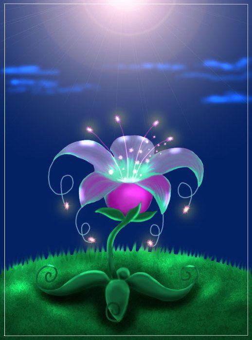 самый волшебный цветок картинки многое