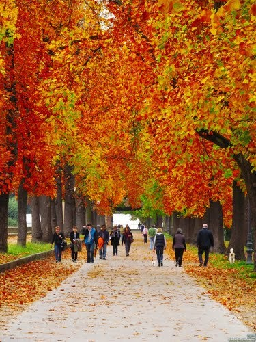 Another beautiful picture of Le Mura in the Fall.