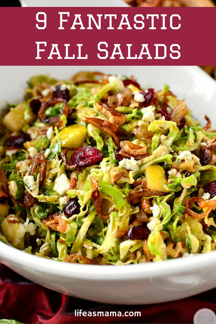The Fall Salad is here to stay and not only do they use delicious vegetables that are the epitome of Autumn, but they are colorful too! Here are 9 mouthwatering salads you need to make this Fall.