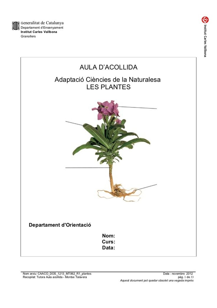 Caaco dos 1213_mt062_r1_plantes by mtalaverxtec via slideshare