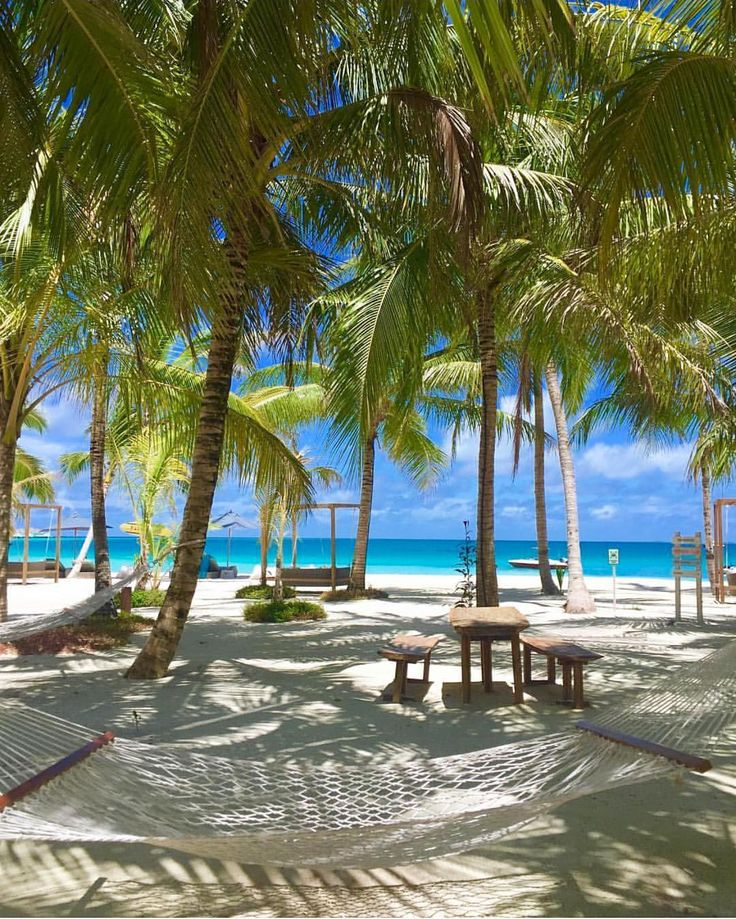 "1,569 Likes, 10 Comments - MYVILLAS - Lux Hotels & Travel (@myvillas) on Instagram: ""Relax in hammock or swim? In the sea? Finolhu Maldives @c____ma Follow @MyVillas for more…"""