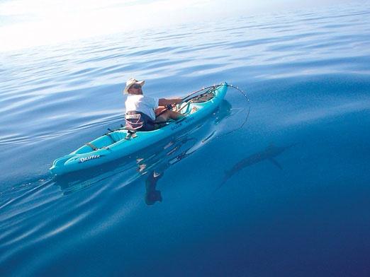 17 best images about ocean kayak on pinterest utility for Ocean kayak fishing