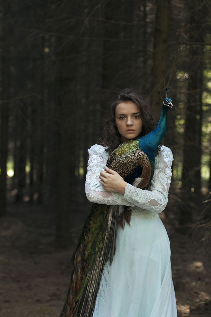 Girl in white holding a peacock, in the middle of the woods. Perfect as visual writing prompt, book inspiration, mood setting and character brainstorming. #fantasy #wild #female #fiction #nanowrimo