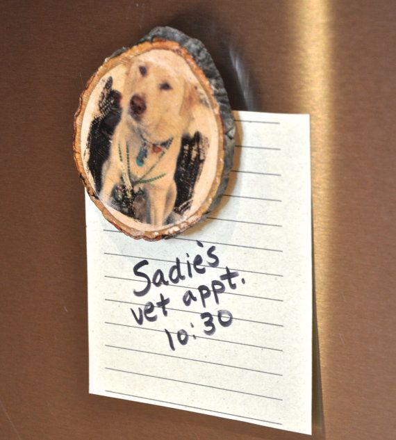 CUSTOM  Pet Magnet on wood slice by pawandprint on Etsy, $8.00