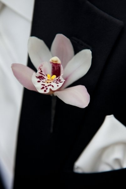 Orchid flowers are the perfect flower for a buttonhole. #wedding #buttonhole #groom #orchid