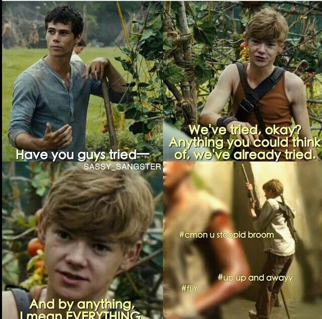 COME ON NEWT! YOU CAN DO IT! YOU TOO, BROOM! LoL