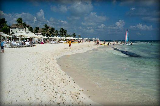 Наш отель расположен в городке Плайя-дель-Кармен, славящемся своими белоснежными пляжами. http://rivieramaya.grandvelas.com/russian/