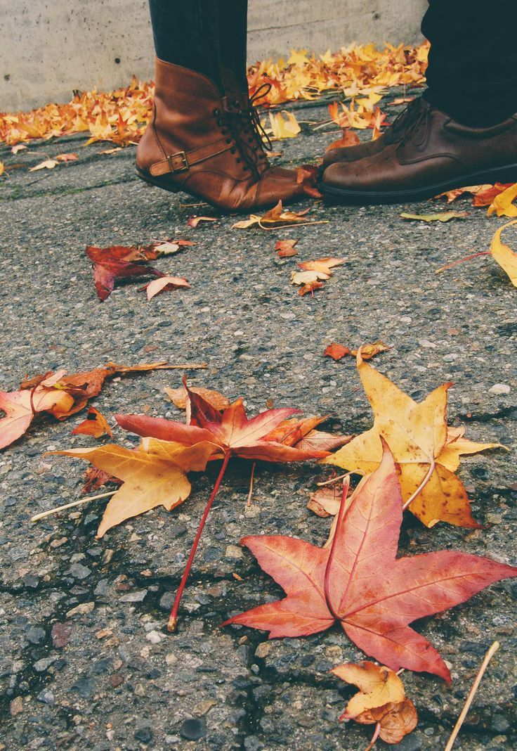 tip toes & fall leaves