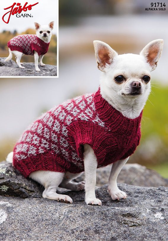 Järbo pattern sweater for our furry friends.