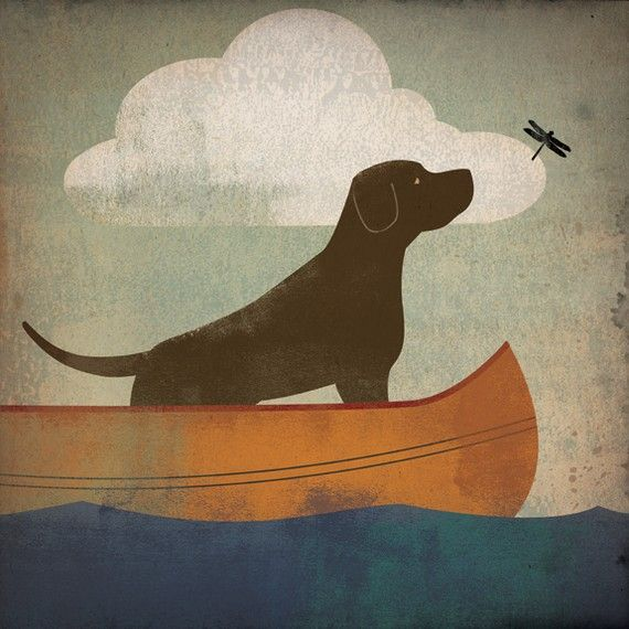 Chocolate lab canoe ride