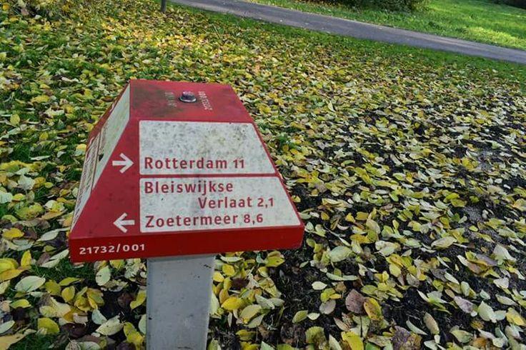 De weg kwijt?