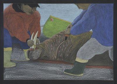 Tim Pitsiulak - Harvest 32.25 x 48.25 Coloured pencil on paper
