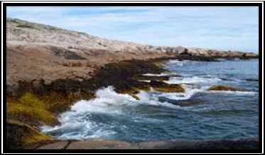 Duncans Cove is one of the HRM's top coastal hikes, if not the best.  The coastal barrens give way to rugged granite cliffs which are pounded... http://www.mervedinger.com